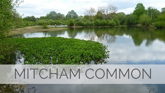 Learn To Say Mitcham Common?